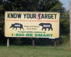 """Know Your Target"" Education Campaign"